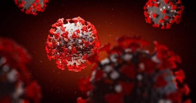 7 нови заразени за деня, 1618 са вече потвърдените случаи на COVID-19