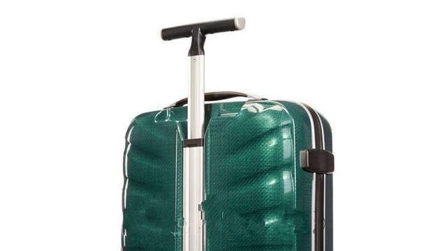 Убитото дете край Пасарел: Говори ли ви нещо този куфар?