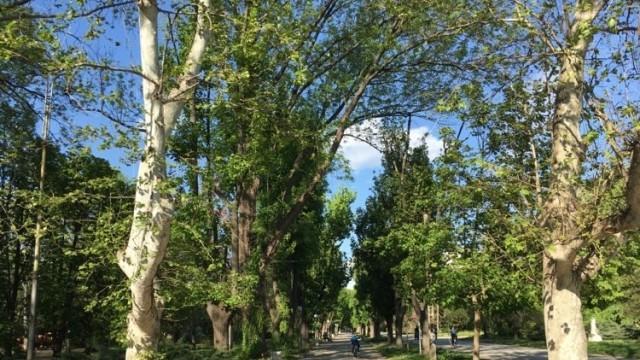 Пенчо Милков отвори парковете, противоепидемичните мерки остават в сила (Схеми на движението)