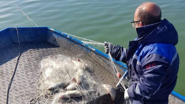 Принуждават бракониери да режат мрежите си и да връщат риба в морето