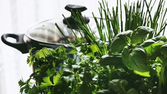 Кои билки укрепват имунитета