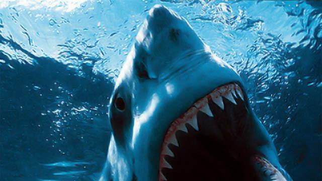 Акула нападна американец, преди това го хапали змия и мечка