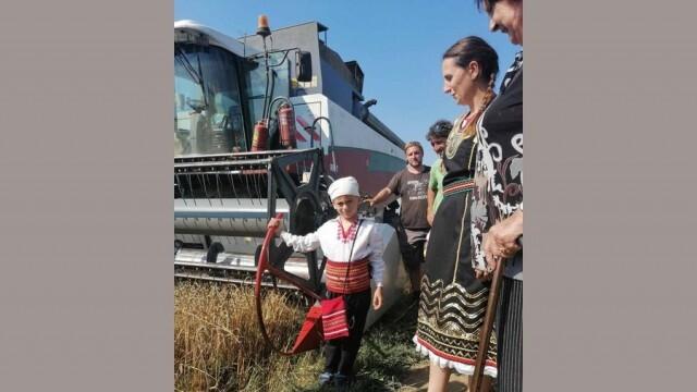 С красив ритуал започна жътвата в община Гулянци