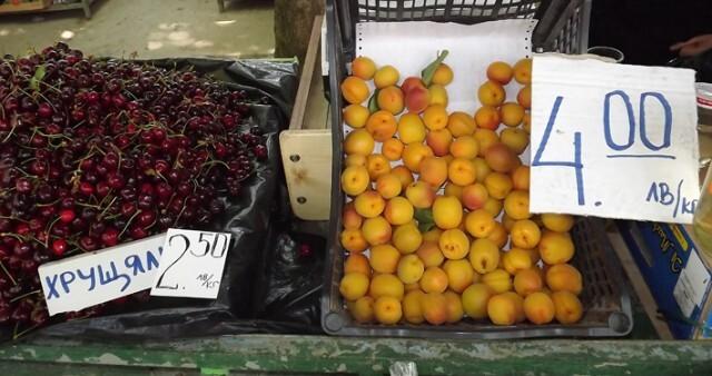 С държавна помощ от над 600 000 лева силистренските стопани опазиха овошките