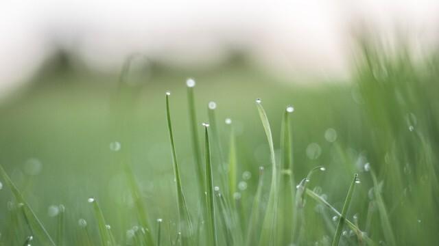 В последния ден на февруари -  леко понижаване на температурите, на отделни места -  дъжд