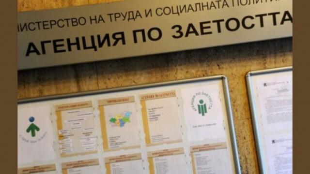 Безработицата в община Плевен е под средната за страната