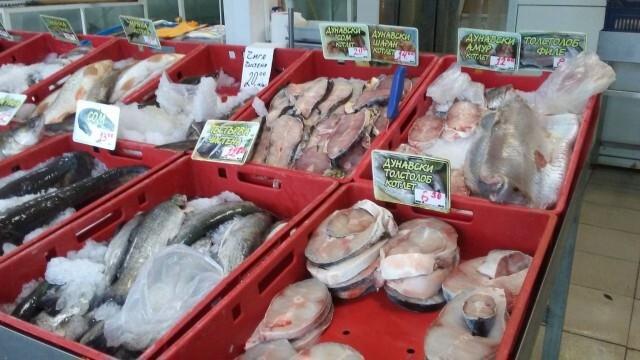Масовите проверки за качеството на рибата в Русенско не установиха нарушения