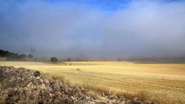 Множество пожари в стърнища и сухи треви в Плевенско и околностите