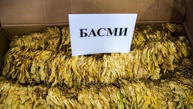 Производителите на ориенталски тютюн отказват да продават. Цените били по-ниски от миналогодишните