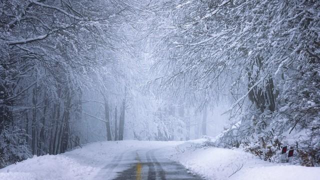 АПИ: В 14 области жълт код за силен вятър, в 5 - дъжд и сняг