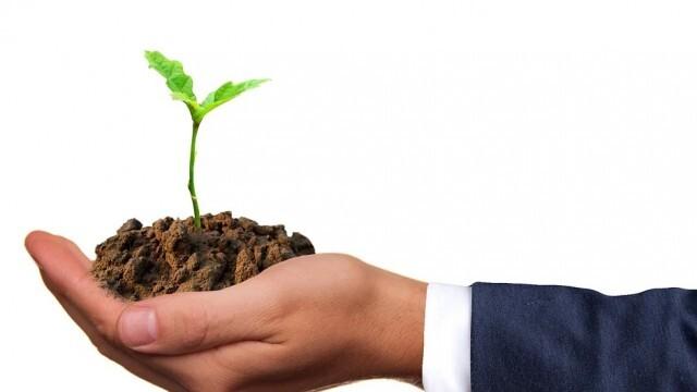 Зеленчукопроизводителите и овощарите кандидатстват за нисколихвени кредити от ДФЗ за семена и торове