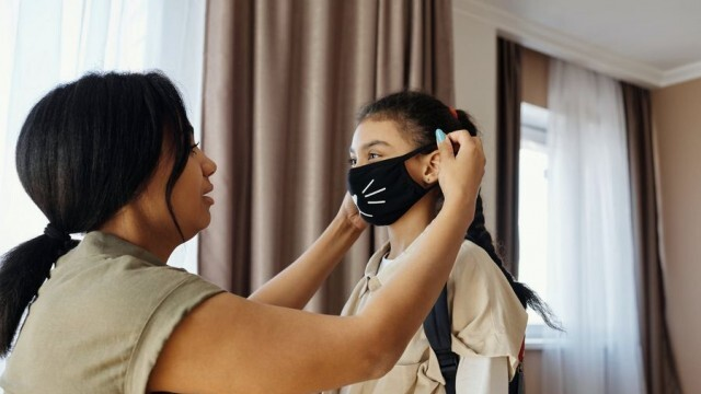 Френската Академия по медицина:  Не е нужно да перете маските от плат на 60°C