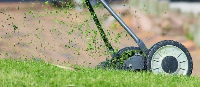 Седмичен график на дейностите по косене на тревните площи в Русе