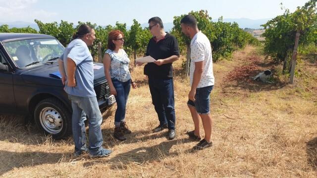 ДФЗ започва изненадващи проверки на служителите си и на земеделците