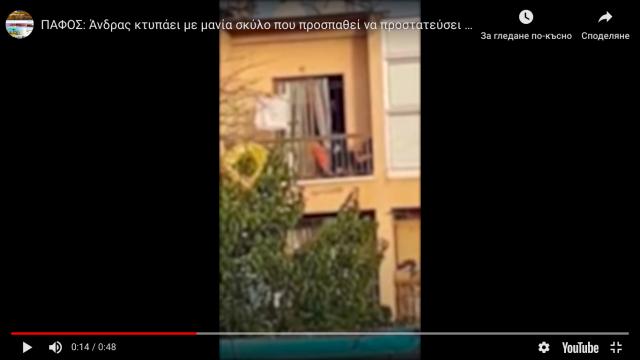 Българин преби жена си и кучето им в Кипър (ВИДЕО)