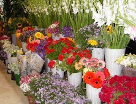 НАП погва с проверки търговците на едро с цветя