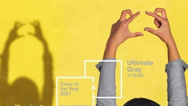 """Цветовете на """"Пантон"""" за 2021 – символ на надеждност и надежда (ВИДЕО)"""