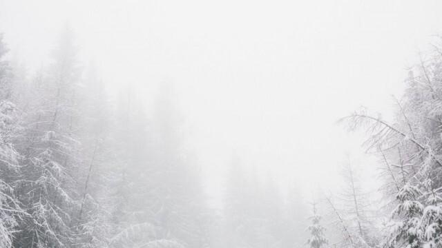 Снежна буря отне живота на трима в Испания