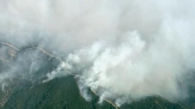 Пожари изпепелиха над 2 милиона акра гори в Калифорния