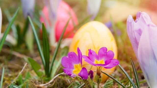 Светъл, слънчев и топъл Великден