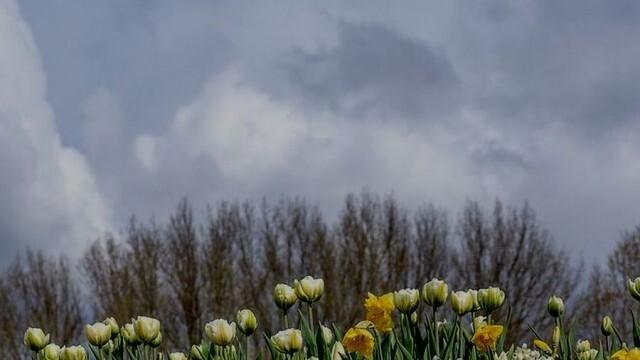 Облачно, с превалявания и слаб вятър