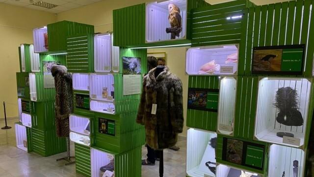 Уникална изложба за застрашени от изчезване растения и животни гостува в РИМ – Плевен