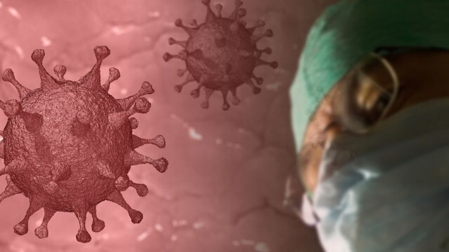 За 24 часа: 7 са новите случаи на коронавирус в област Ловеч, 545 са общо в страната