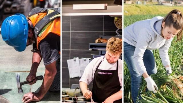 Полезно: Експерти ще запознават работещи и желаещи да работят в Австрия с трудовите им права