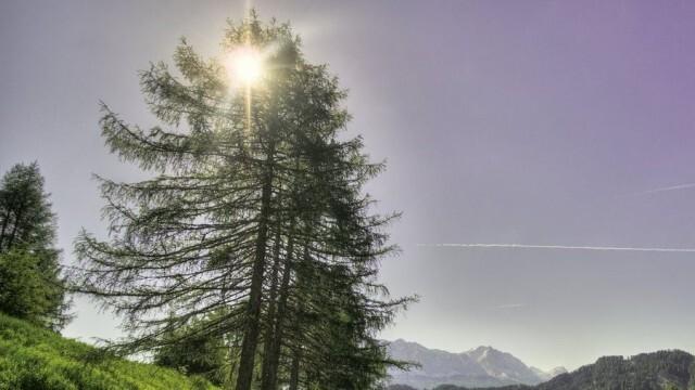 Слънчево, краткотрайни валежи на места в планините