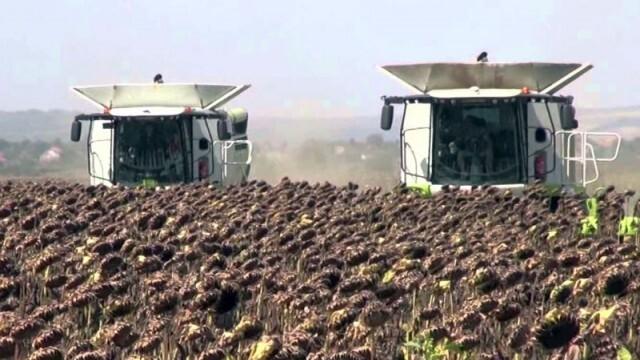 Земеделци искат изслушване в парламента - очакват масови фалити заради ниски добиви