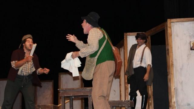 """Плевен: Постановката  """"Боряна"""" на сцена днес с две представления"""