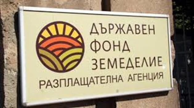 Димитров освободен със съмнения, че бил бухалката на ДФ