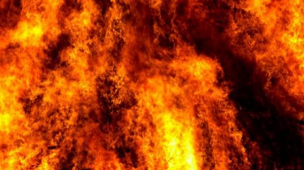Над 11 пожара в Плевенско