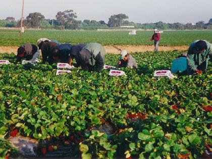 Англия, Испания, Русия и Бурунди влошили условията на труд
