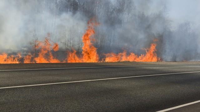 Пожар затвори временно пътя към Гърция при Кресна