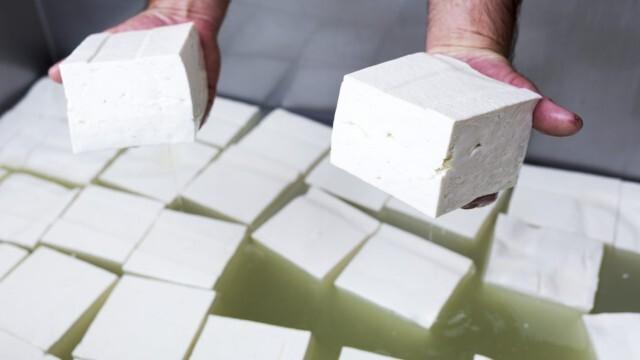 Регламентирано: Бялото саламурено сирене - само с поне 40 % масленост!