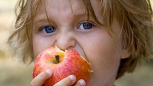 Отпускат 4,5 млн. лева за възстановяване на ДДС по училищните схеми за доставка на плодове и мляко