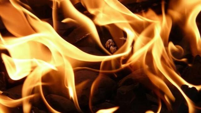 Екипи на пожарната гасиха пламнали сгради, сухи треви и контейнери