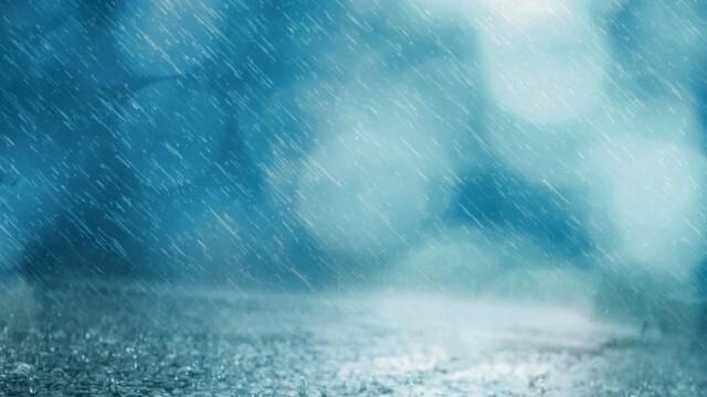 Мрачно и дъждовно, ще духа слаб до умерен от север-северозапад