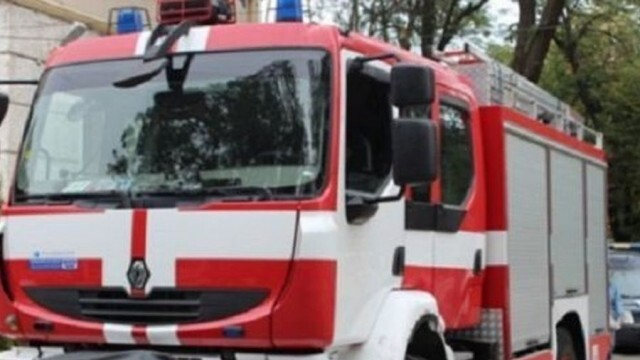 Пламнало БМВ едва не подпали иглолистна гора в близост до Староселци