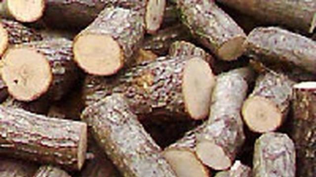 Плевен: Задържаха бракониер с 3 куб. м дърва без горска марка