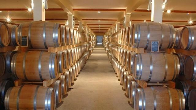 Наближава крайният срок за прием на документи по мярката за инвестиции във винарски изби