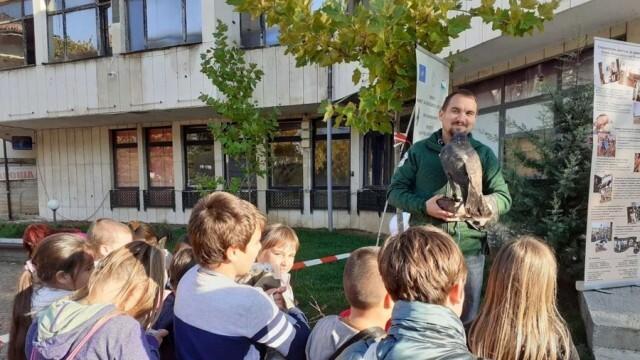 """Десетки деца се включиха в """"Нощ на прилепите"""" в Ловеч"""