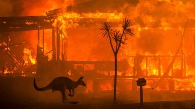 "Пожарите в Австралия - ""Климатичният Чернобил"