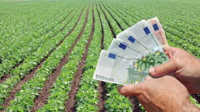 Изплащат на фермери  90 милиона лева