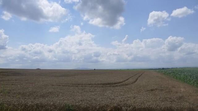 Кой и как ще извършва обследването на пострадалите от проливните дъждове земеделски площи
