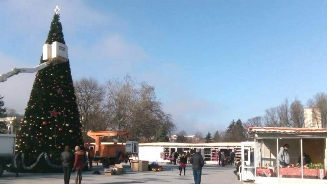Елха, предоставена от Посолството на Русия в България, ще радва тази година плевенчани