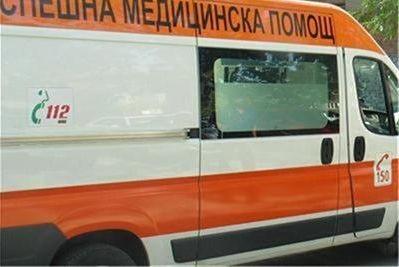 Катастрофа заради елен вкара водач в болница