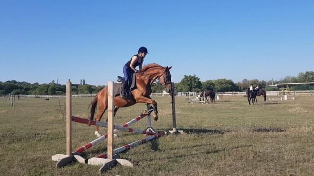 Три дни държавно първенство по всестранна езда в Русе