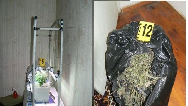 Иззеха 3 килограма марихуана от дома на 31-годишна в Бреница